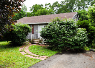 Foreclosed Home en FISH LAKE RD, Niverville, NY - 12130