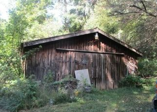 Foreclosed Home in DAKE HILL RD, Cattaraugus, NY - 14719
