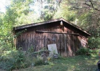 Foreclosed Home en DAKE HILL RD, Cattaraugus, NY - 14719