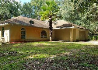 Foreclosed Home en CITADEL DR, Webster, FL - 33597