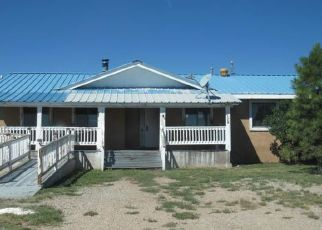 Foreclosed Home en ROBERT DR, Mc Intosh, NM - 87032