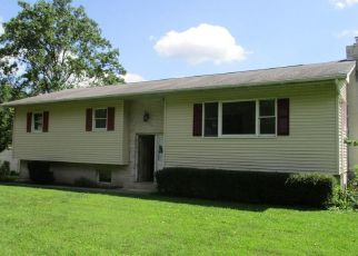 Foreclosed Home en PEEVY RD, East Greenville, PA - 18041