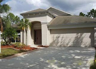 Casa en ejecución hipotecaria in Hillsborough Condado, FL ID: F4296865
