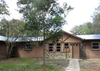 Foreclosed Home en S EASTERN AVE, Homosassa, FL - 34446