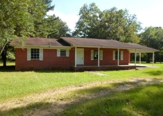 Foreclosed Home in JOE MILLER LN, Collins, MS - 39428