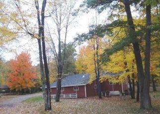 Foreclosed Home en E COUNTY ROAD A, Solon Springs, WI - 54873