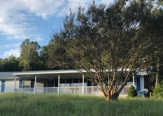 Foreclosed Home in TEXAS HOLLOW RD, Luttrell, TN - 37779