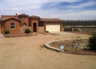 Foreclosed Home en GREEN RUN RD, La Mesa, NM - 88044