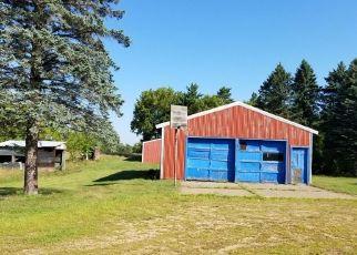 Casa en ejecución hipotecaria in Isanti, MN, 55040,  253RD AVE NE ID: F4301217