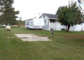 Foreclosed Home en CLYDE RD, Mesick, MI - 49668