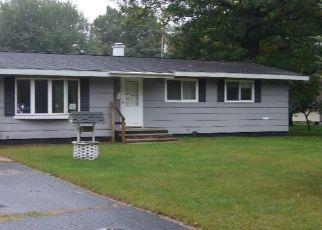 Foreclosure Home in Delta county, MI ID: F4301412