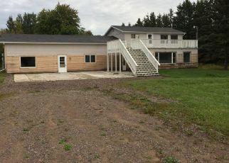 Foreclosure Home in Chippewa county, MI ID: F4301445