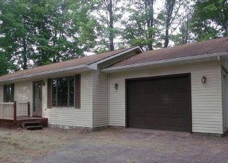 Casa en ejecución hipotecaria in Emmet Condado, MI ID: F4301488