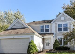 Foreclosed Home en STANTON CT, Lake In The Hills, IL - 60156