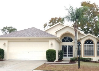 Foreclosed Home en CHICKASAW DR, Spring Hill, FL - 34609