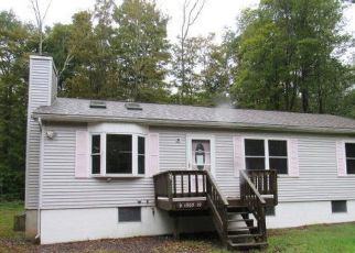 Foreclosed Home en MAXATAWNY DR, Pocono Lake, PA - 18347