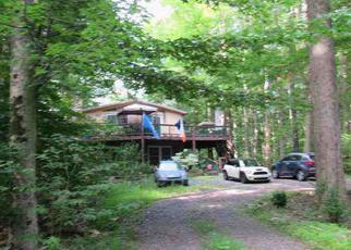 Foreclosed Home en POTTER DR, Pocono Lake, PA - 18347