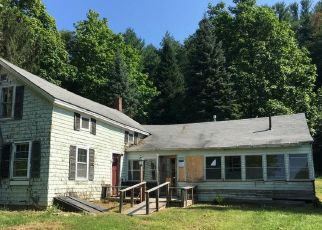 Foreclosed Home in CLAYTON MILL RIVER RD, Southfield, MA - 01259