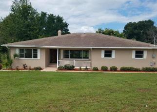 Foreclosed Home en E SANDPIPER DR, Inverness, FL - 34450