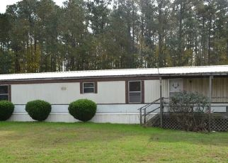 Foreclosed Home en MARSH HAWK RD, Mathews, VA - 23109