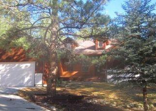 Foreclosure Home in Douglas county, CO ID: F4309310