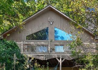 Foreclosed Home in HANLON MOUNTAIN RD, Leicester, NC - 28748