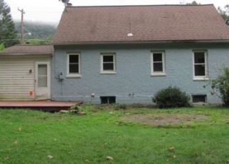 Foreclosed Home in W CIRCLE DR, Vestal, NY - 13850