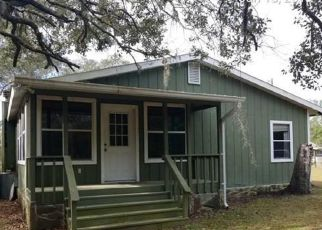 Foreclosed Home in NE 239TH LN, Fort Mc Coy, FL - 32134