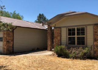 Foreclosed Home en COLUMBINE LN, Parachute, CO - 81635