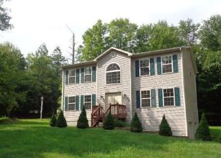 Foreclosed Home en OXFORD ST, Rock Hill, NY - 12775