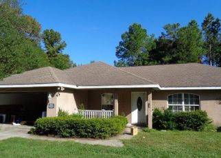Foreclosed Home in SE 145TH ST, Summerfield, FL - 34491