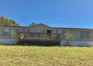 Foreclosed Home in SEAGRAVES HOLW, Olive Hill, KY - 41164