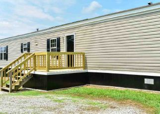 Foreclosure Home in Lauderdale county, AL ID: F4314284