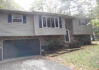 Foreclosed Home en WILLOW CREEK DR, Kunkletown, PA - 18058