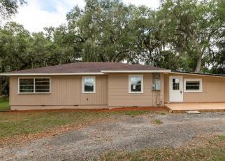 Foreclosed Home en SE 48TH TER, Webster, FL - 33597