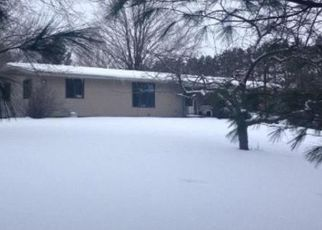 Foreclosed Home en S STATE RD, Harbor Springs, MI - 49740