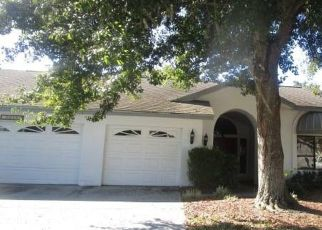 Foreclosed Home in BELMOOR DR, Palm Harbor, FL - 34685