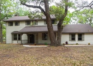 Foreclosed Home en HOMEWOOD LN, Lakeland, FL - 33811