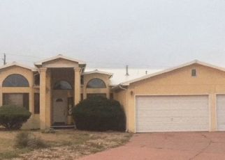 Foreclosed Home en MELINDA LN, Las Vegas, NM - 87701