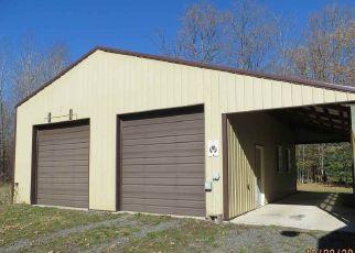 Foreclosure Home in Delta county, MI ID: F4318635