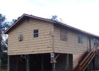 Foreclosed Home en KITTY AVE, Interlachen, FL - 32148