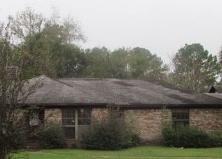 Foreclosed Home en BUCK LAKE RD, Tallahassee, FL - 32317