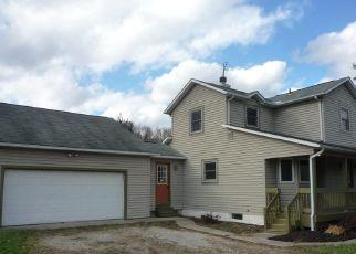 Foreclosed Home en JONES RD, Diamond, OH - 44412