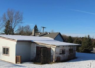 Foreclosed Home en E 30 1/2 RD, Cadillac, MI - 49601