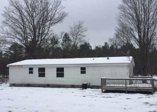 Foreclosure Home in Benzie county, MI ID: F4321600