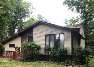 Foreclosed Home en RYAN HILL RD, Lake Ariel, PA - 18436