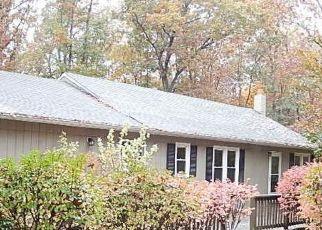 Foreclosed Home en CARPENTER LN, Mineral, VA - 23117