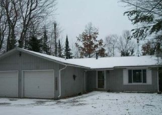 Foreclosed Home en LOWER SUGARBUSH LN, Lac Du Flambeau, WI - 54538