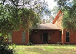 Foreclosed Home in E FRENCH AVE, Orange City, FL - 32763