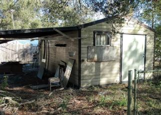 Foreclosure Home in Marion county, FL ID: F4325332